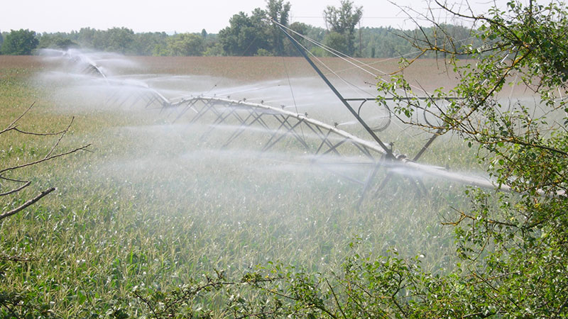 L'innovation en irrigation
